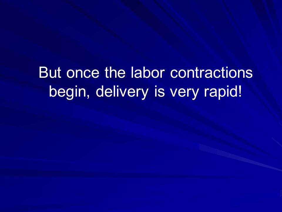 But once the labor contractions begin, delivery is very rapid!