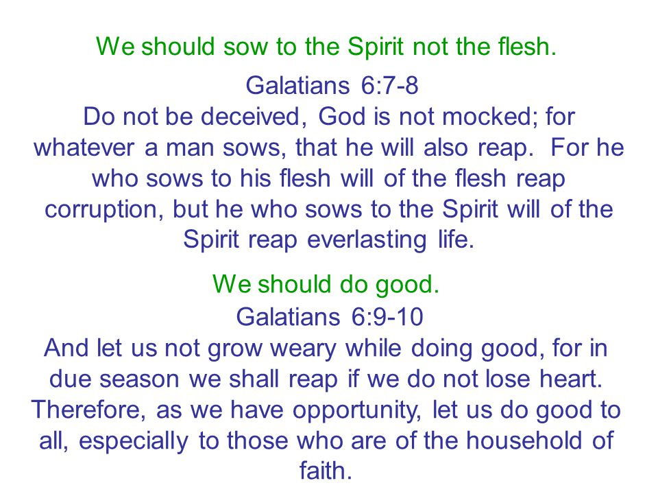 We should sow to the Spirit not the flesh.