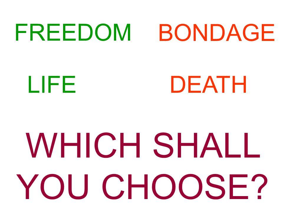 FREEDOM LIFE WHICH SHALL YOU CHOOSE? BONDAGE DEATH