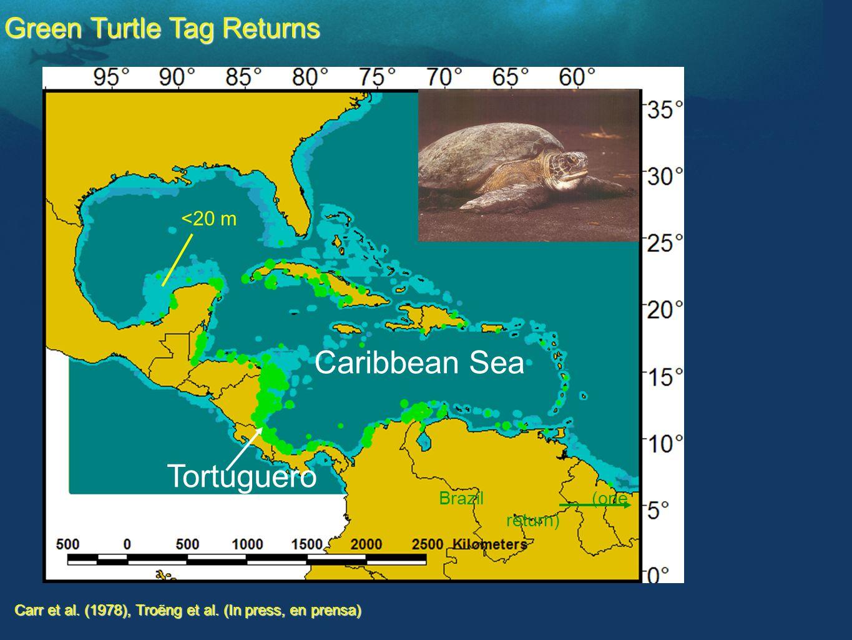 Caribbean Sea Tortuguero Carr et al. (1978), Troëng et al.