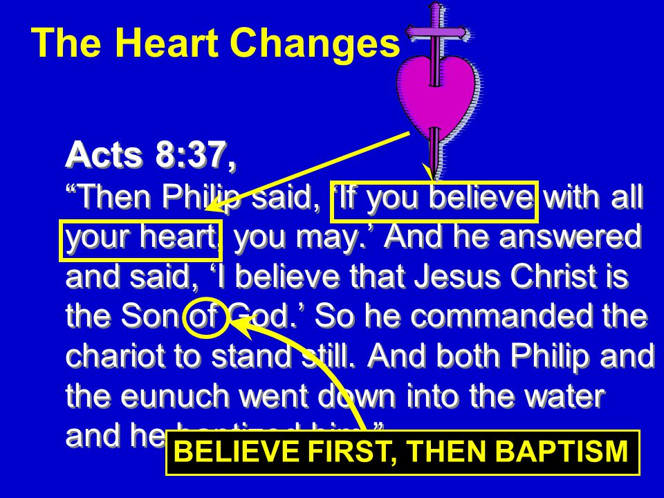 19 The Heart Changes Acts 8:37, Then Philip said, 'If you believe with all your heart, you may.' And he answered and said, 'I believe that Jesus Christ is the Son of God.' So he commanded the chariot to stand still.