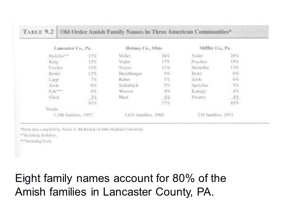 Eight family names account for 80% of the Amish families in Lancaster County, PA.