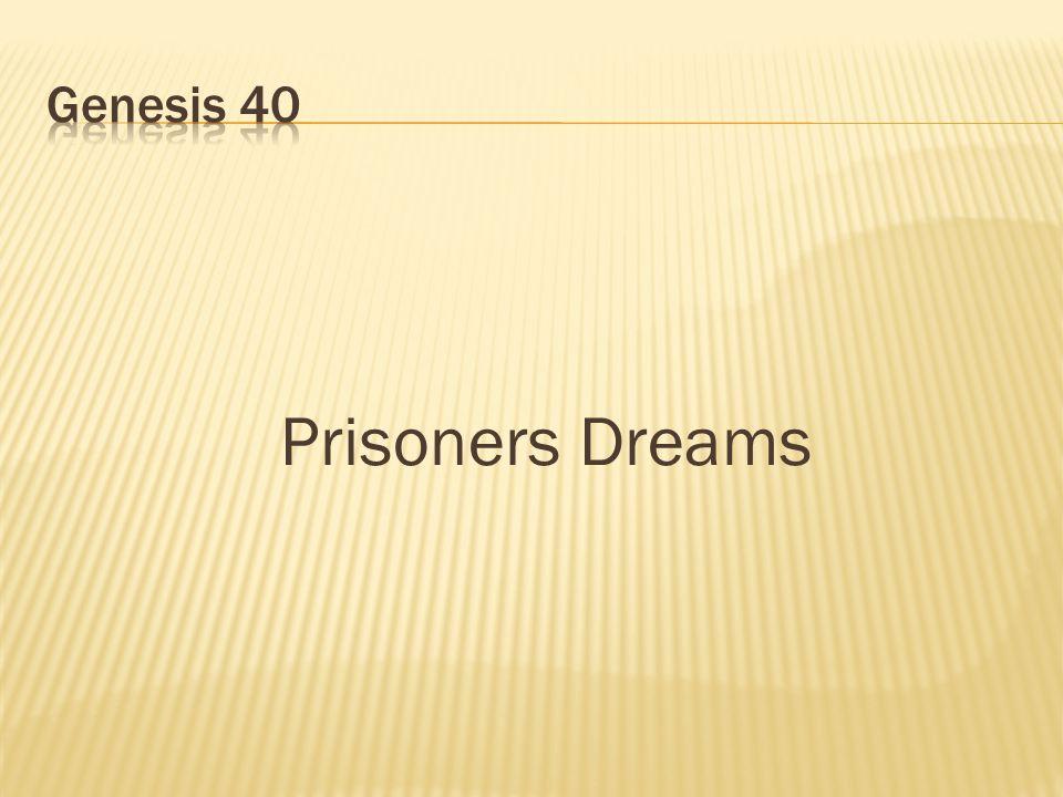 Prisoners Dreams