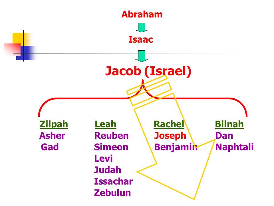 Reuben Simeon Levi Judah Dan NaphtaliGad Asher Issachar Zebulun Joseph Benjamin ZilpahBilnahLeahRachel Jacob (Israel) Abraham Isaac