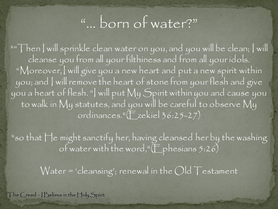 "The Creed – I Believe in the Holy Spirit ""… born of water?"""