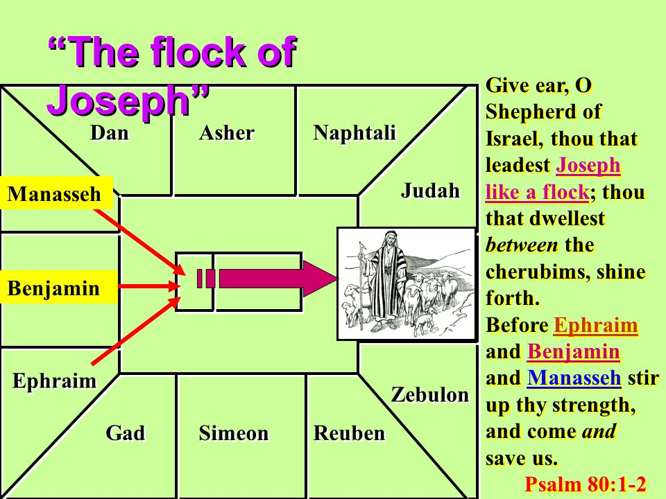Benjamin Simeon Reuben Gad Ephraim Manasseh Dan Asher Naphtali Judah Issachar Zebulon Give ear, O Shepherd of Israel, thou that leadest Joseph like a flock; thou that dwellest between the cherubims, shine forth.