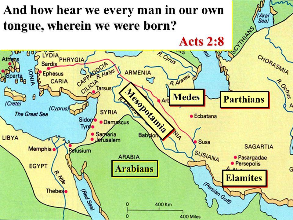 Parthians MedesMedes Elamites MesopotamiaMesopotamia Arabians tongue, wherein we were born.