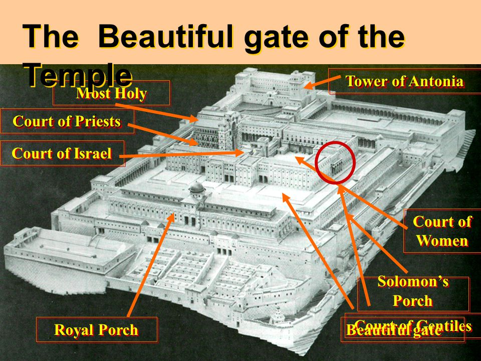 Most Holy Solomon's Porch Solomon's Porch Tower of Antonia Royal Porch Court of Priests Court of Israel Court of Gentiles Court of Women The Beautiful gate of the Temple Beautiful gate