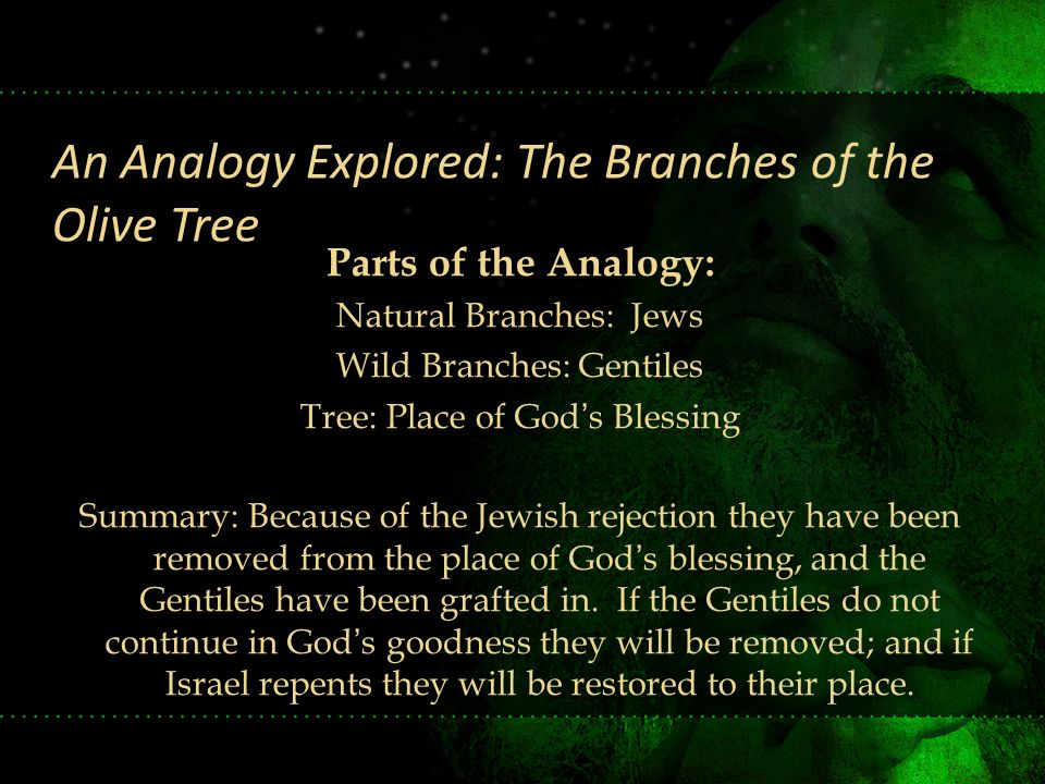 Parts of the Analogy: Natural Branches: Jews Wild Branches: Gentiles Tree: Place of God's Blessing Summary: Because of the Jewish rejection they have