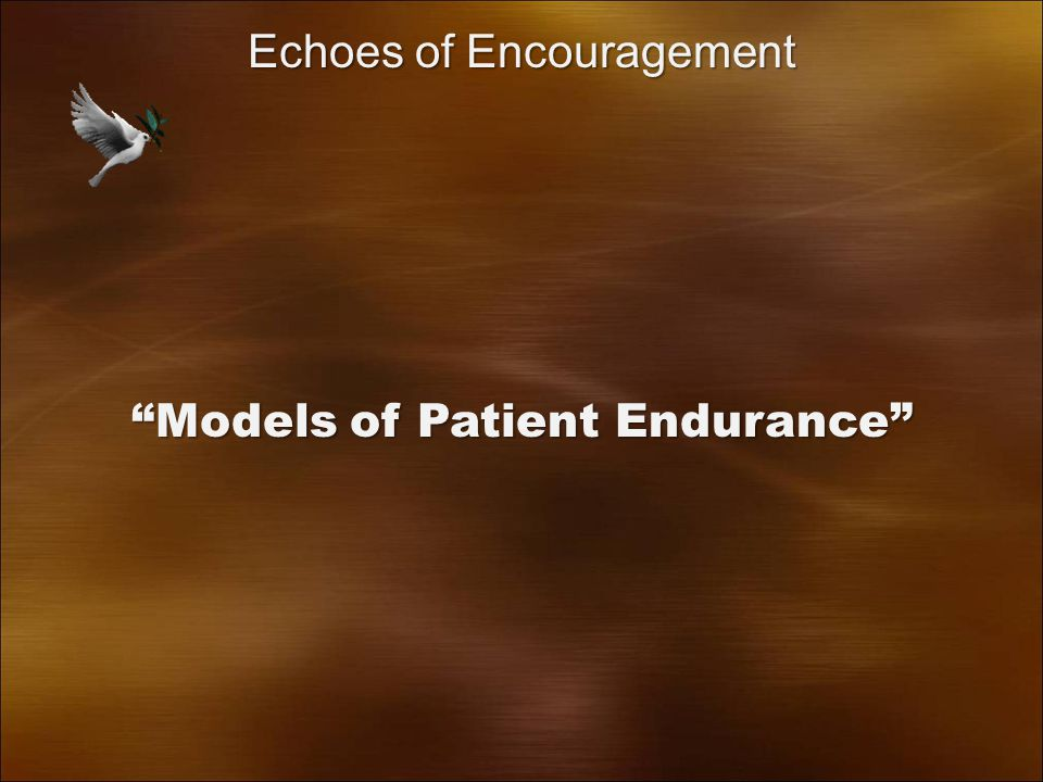 Models of Patient Endurance Echoes of Encouragement