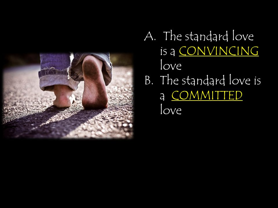 A. The standard love is a CONVINCING love B.The standard love is a COMMITTED love