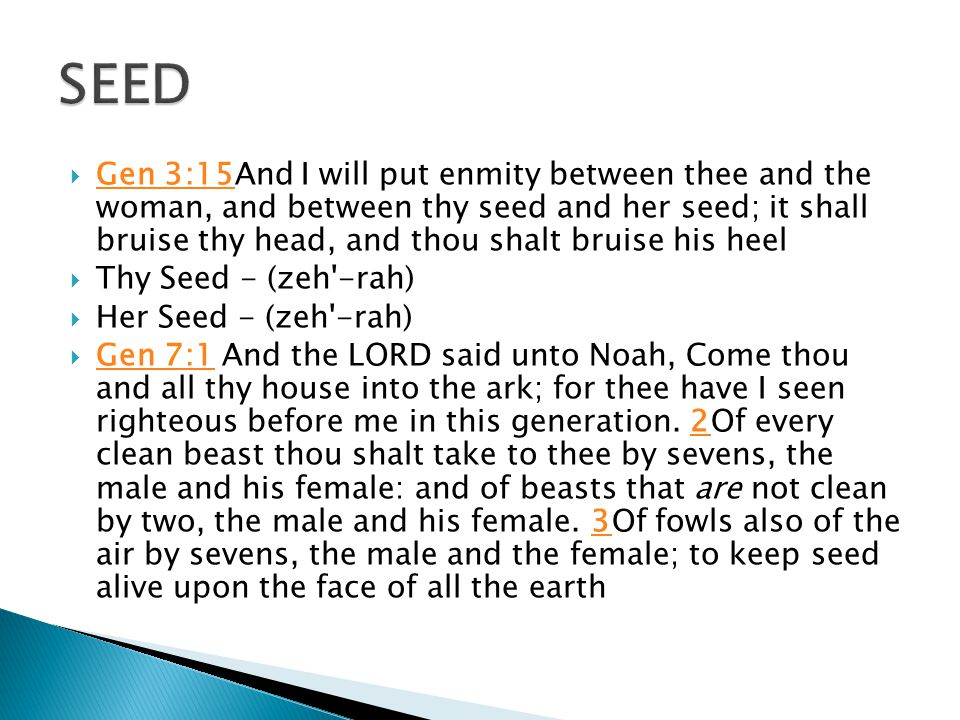  Gen 3:15And I will put enmity between thee and the woman, and between thy seed and her seed; it shall bruise thy head, and thou shalt bruise his hee