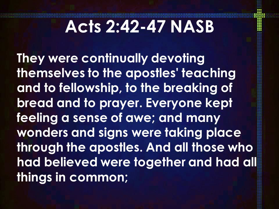 But speaking the truth in love, we are to grow up in all aspects into Him who is the head, even Christ, 16 from whom the whole body, being fitted and held together by what every joint supplies, according to the proper working of each individual part, causes the growth of the body for the building up of itself in love.