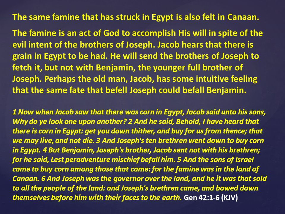 Rachel was the favored bride of Jacob, but she had only two sons, Joseph and Benjamin.