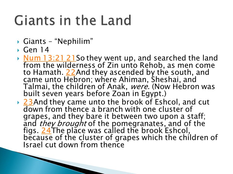  Giants – Nephilim  Gen 14  Num 13:21 21So they went up, and searched the land from the wilderness of Zin unto Rehob, as men come to Hamath.