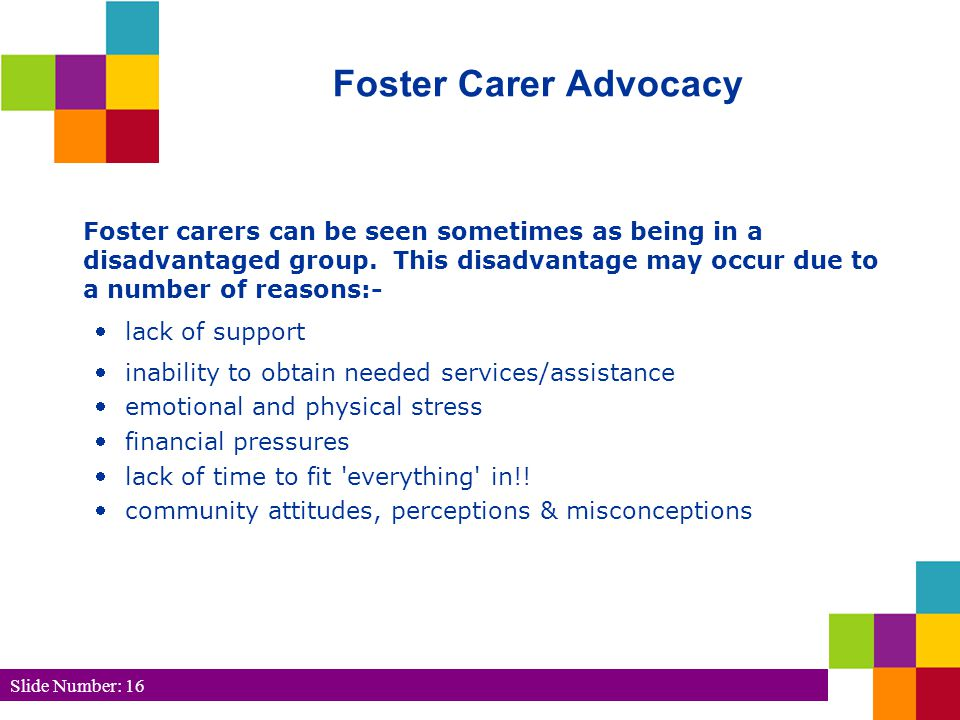 Slide Number: 16 Foster Carer Advocacy Foster carers can be seen sometimes as being in a disadvantaged group.