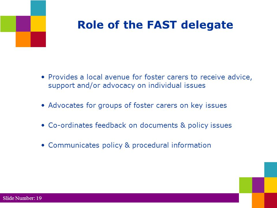 Slide Number: 19 Role of the FAST delegate Provides a local avenue for foster carers to receive advice, support and/or advocacy on individual issues Advocates for groups of foster carers on key issues Co-ordinates feedback on documents & policy issues Communicates policy & procedural information
