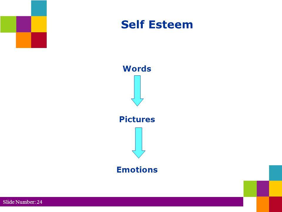 Slide Number: 24 Words Pictures Emotions Self Esteem