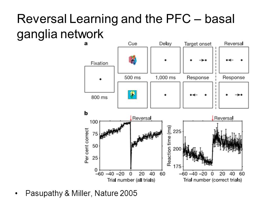 Reversal Learning and the PFC – basal ganglia network Pasupathy & Miller, Nature 2005