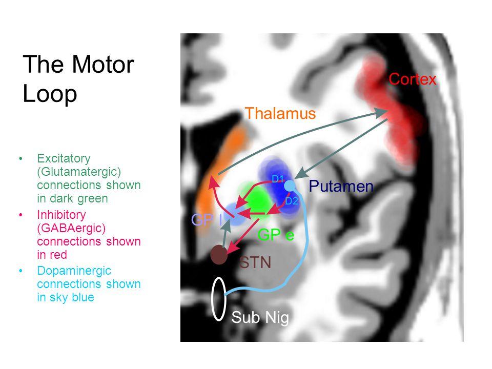 Basal Ganglia Loops Source: Redgrave et al 2010, Nature Neuroscience
