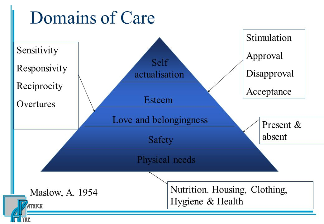 Domains of Care Physical needs Safety Love and belongingness Esteem Self actualisation Sensitivity Responsivity Reciprocity Overtures Stimulation Approval Disapproval Acceptance Present & absent Nutrition.