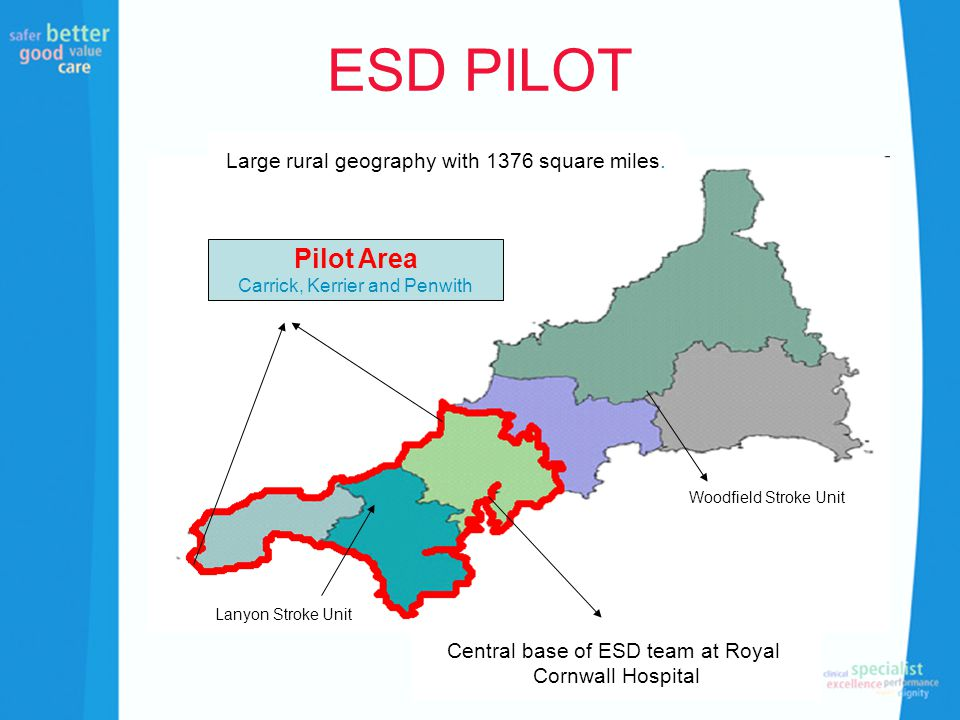 ESD PILOT Pilot Area Carrick, Kerrier and Penwith Central base of ESD team at Royal Cornwall Hospital Woodfield Stroke Unit Lanyon Stroke Unit Large r