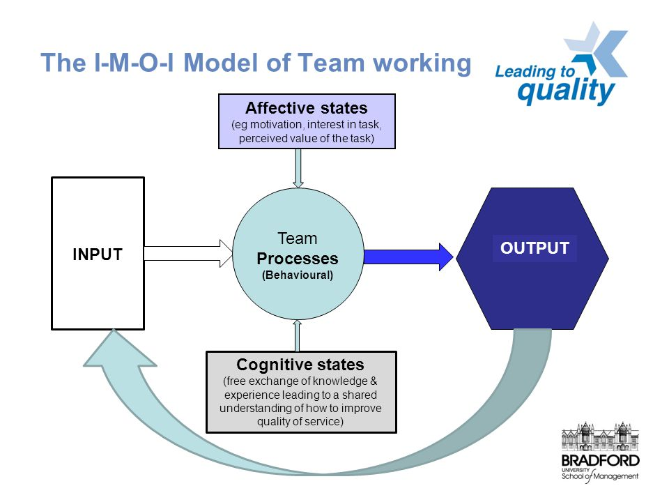 The I-M-O-I Model of Team working INPUT Team Processes (Behavioural) OUTPUT Affective states (eg motivation, interest in task, perceived value of the task) Cognitive states (free exchange of knowledge & experience leading to a shared understanding of how to improve quality of service)