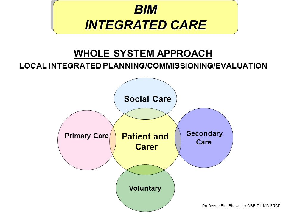 WHOLE SYSTEM APPROACH LOCAL INTEGRATED PLANNING/COMMISSIONING/EVALUATION Patient and Carer Primary Care Secondary Care Voluntary Professor Bim Bhowmick OBE DL MD FRCP Social Care BIM INTEGRATED CARE BIM