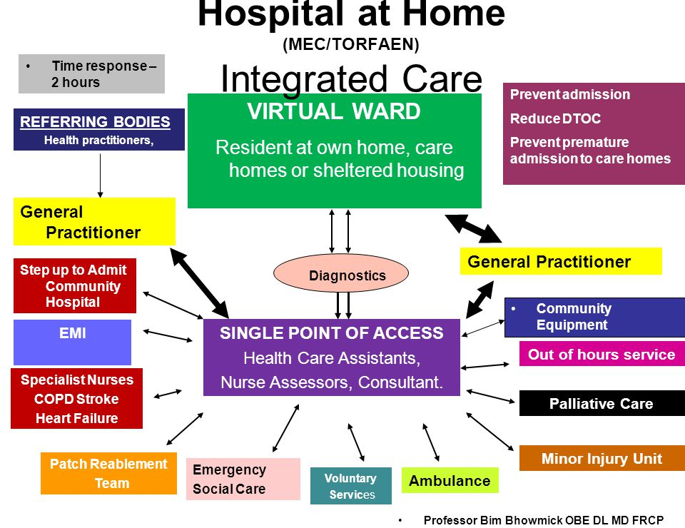 Prevent admission Reduce DTOC Prevent premature admission to care homes VIRTUAL WARD Resident at own home, care homes or sheltered housing Diagnostics SINGLE POINT OF ACCESS Health Care Assistants, Nurse Assessors, Consultant.