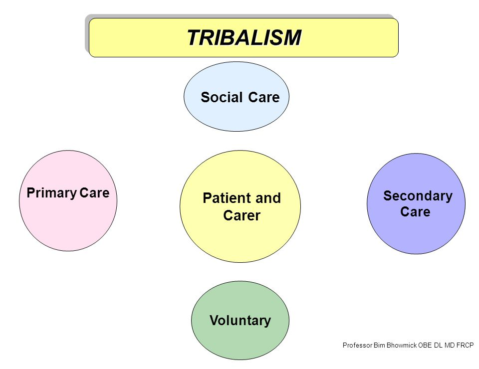 Primary Care Secondary Care Voluntary Professor Bim Bhowmick OBE DL MD FRCP Social Care TRIBALISMTRIBALISM Patient and Carer