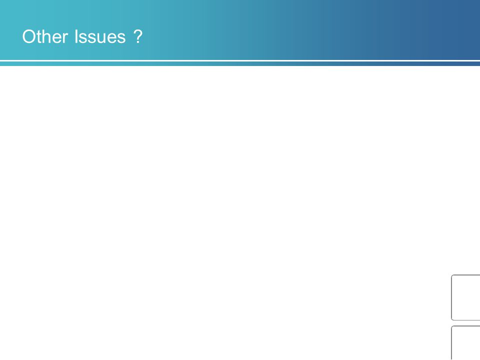 Other Issues ?