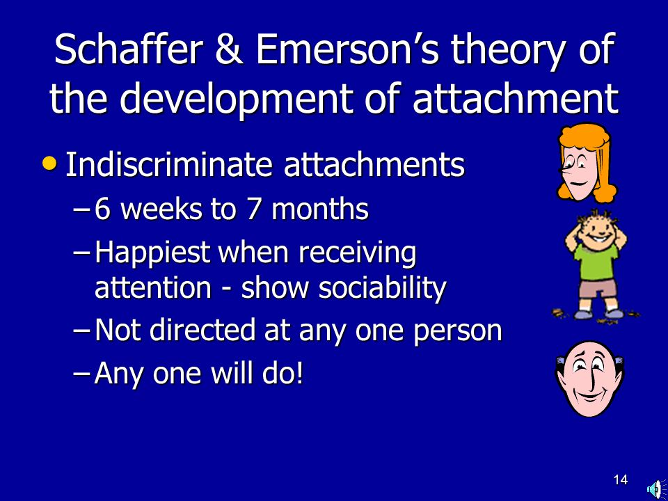 13 Schaffer & Emerson's theory of the development of attachment Asocial stage Asocial stage –0 to 6 weeks –Babies respond to inanimate objects and hum