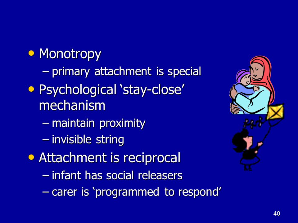 39 Monotropy Promotes safety and survival Promotes safety and survival –Influenced by Darwin Innate Innate –Babies respond to human faces very early Internal Working Model Internal Working Model –psychodynamic theory –irreversible