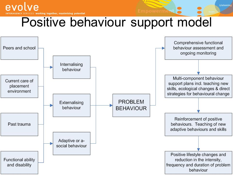 Positive behaviour support model