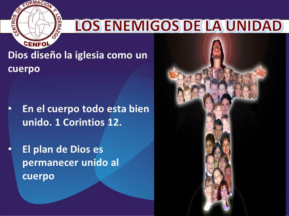 Dios diseño la iglesia como un cuerpo En el cuerpo todo esta bien unido. 1 Corintios 12. El plan de Dios es permanecer unido al cuerpo