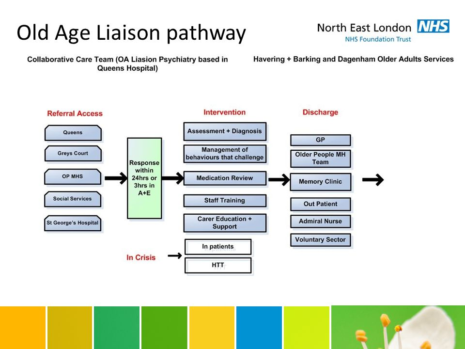 Old Age Liaison pathway