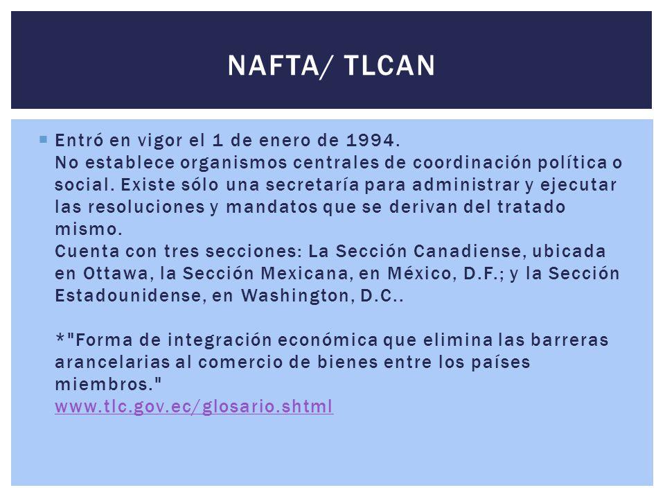 Entró en vigor el 1 de enero de 1994. No establece organismos centrales de coordinación política o social. Existe sólo una secretaría para administr