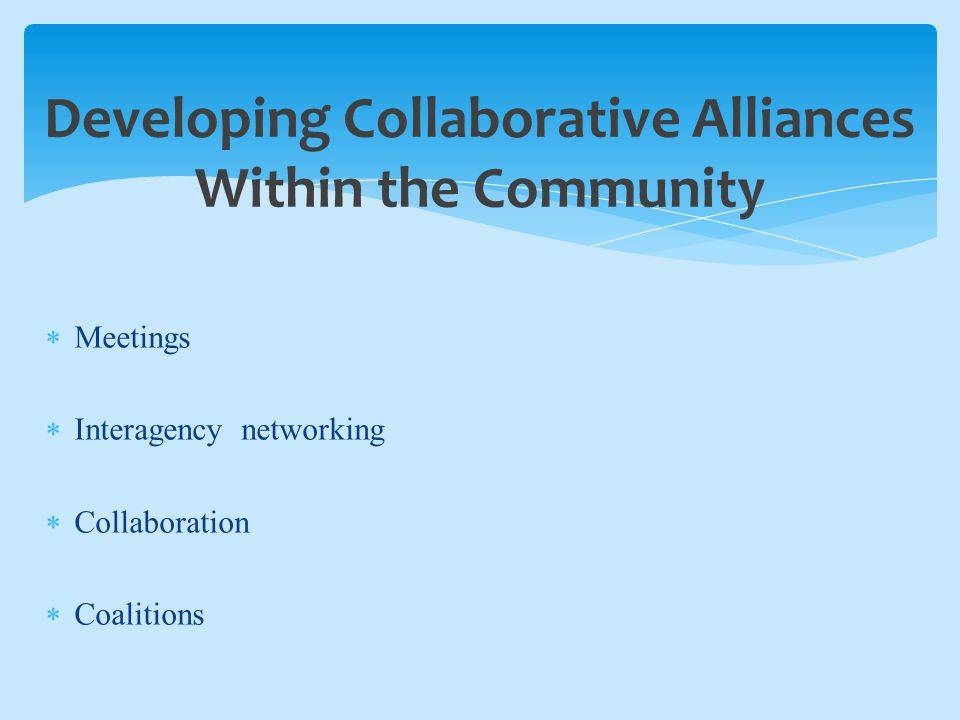 Developing Collaborative Alliances Within the Community  Meetings  Interagency networking  Collaboration  Coalitions