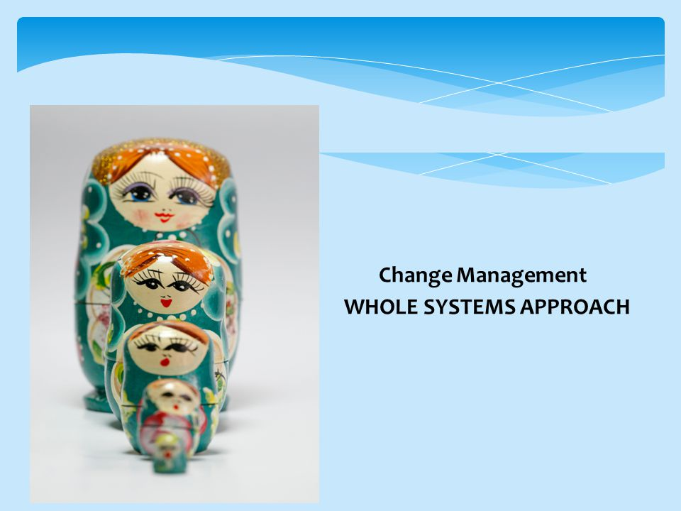 Change Management WHOLE SYSTEMS APPROACH