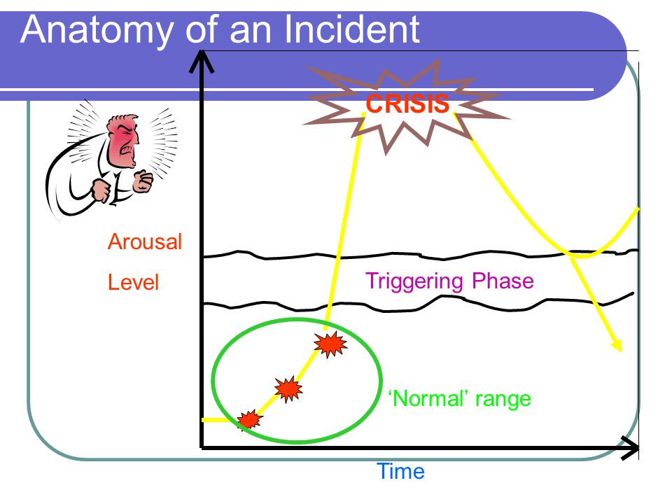 Arousal Level Time Triggering Phase CRISIS 'Normal' range Anatomy of an Incident