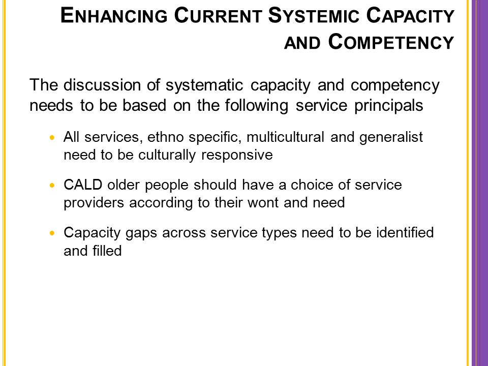 E NHANCING C URRENT S YSTEMIC C APACITY AND C OMPETENCY The discussion of systematic capacity and competency needs to be based on the following servic