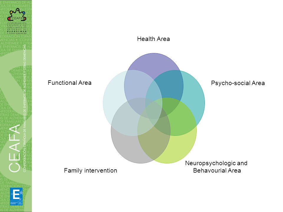 Health Area Psycho-social Area Neuropsychologic and Behavourial Area Family intervention Functional Area