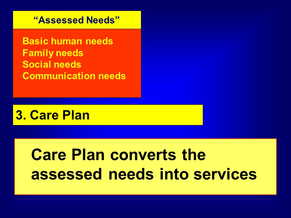 Assessed Needs Basic human needs Family needs Social needs Communication needs 3.