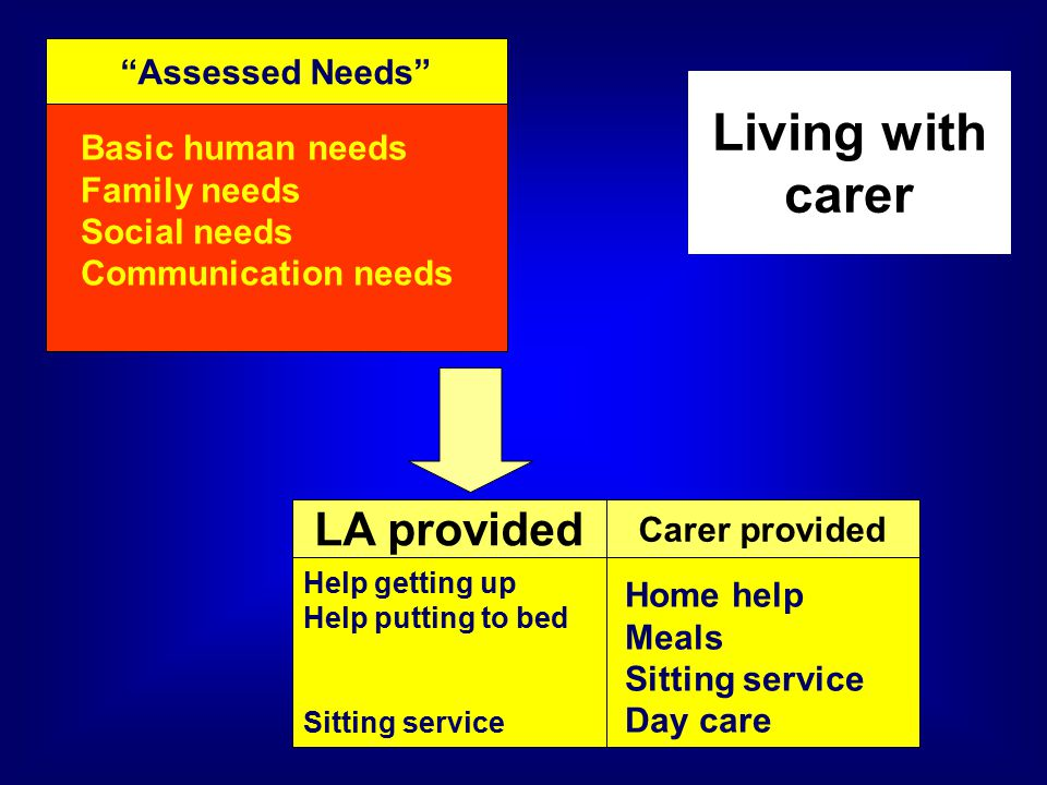 Assessed Needs Basic human needs Family needs Social needs Communication needs LA provided Living with carer Carer provided Help getting up Help putting to bed Sitting service Home help Meals Sitting service Day care