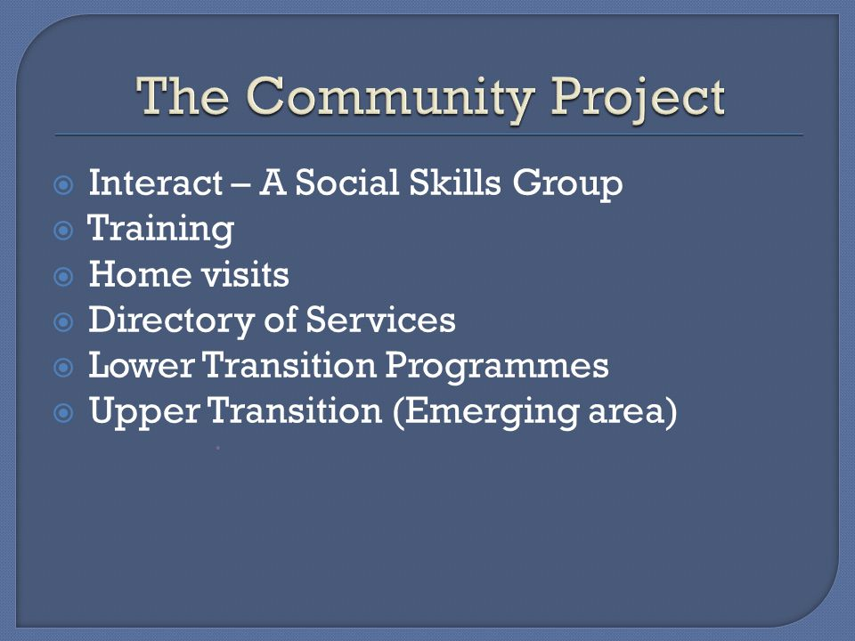  Interact – A Social Skills Group  Training  Home visits  Directory of Services  Lower Transition Programmes  Upper Transition (Emerging area) 