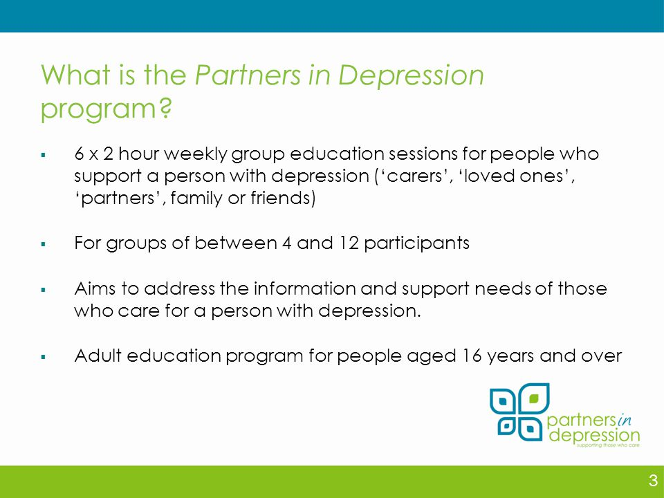 What is the Partners in Depression program.