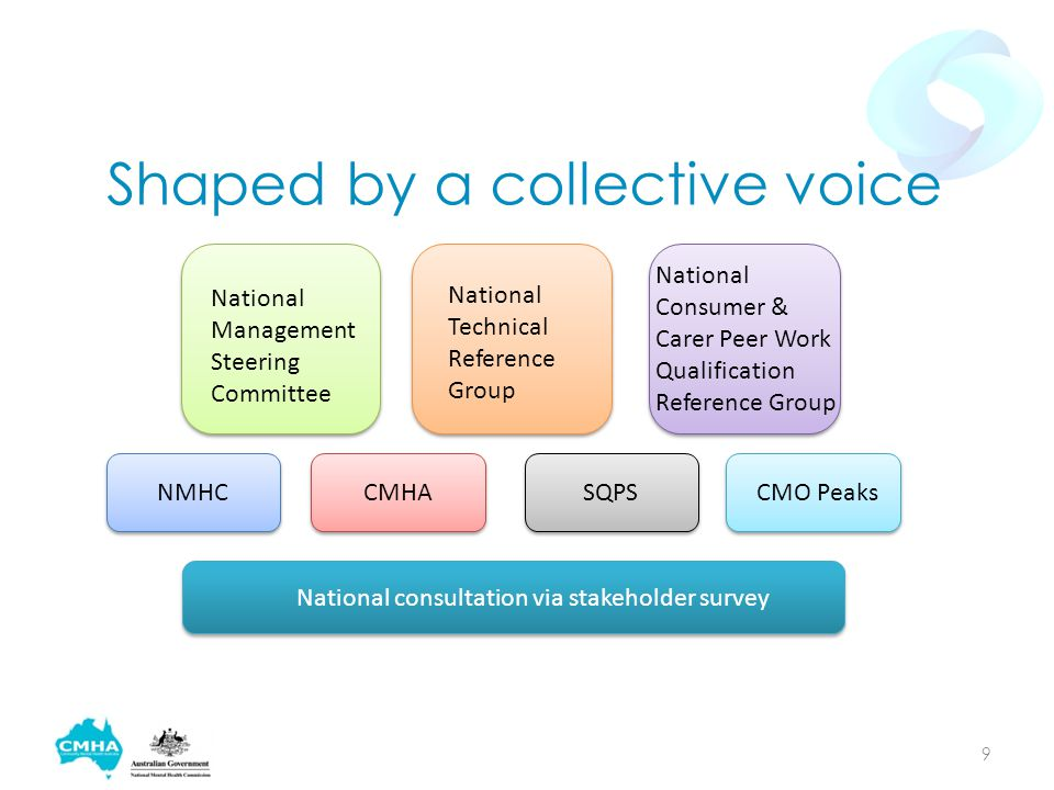 Shaped by a collective voice National Management Steering Committee National Technical Reference Group National Consumer & Carer Peer Work Qualification Reference Group National consultation via stakeholder survey NMHCCMHASQPSCMO Peaks 9