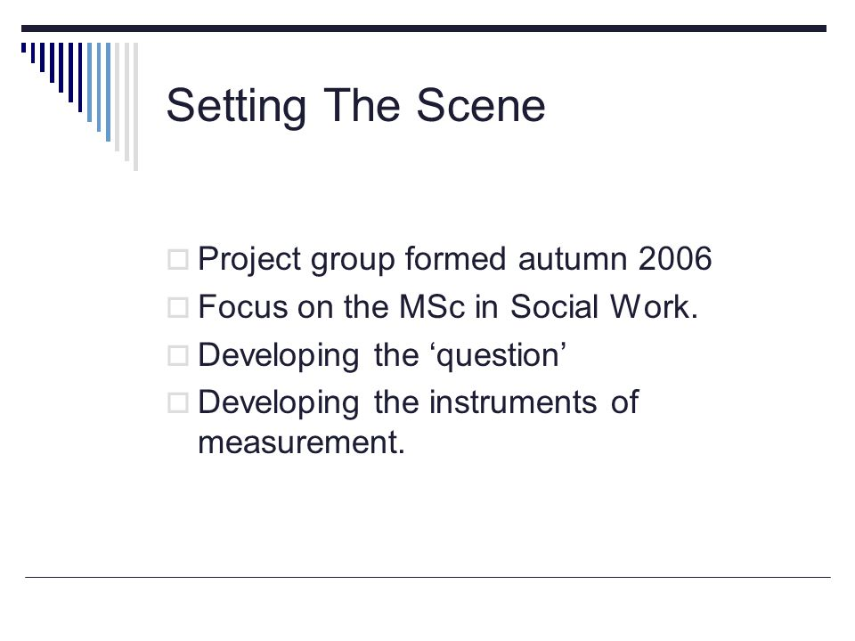 Setting The Scene  Project group formed autumn 2006  Focus on the MSc in Social Work.