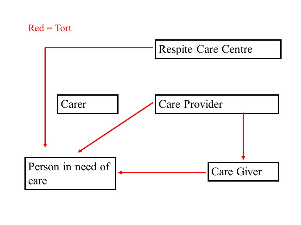 Respite Care Centre Care Provider Care Giver Person in need of care Carer Red = Tort Blue = Contract
