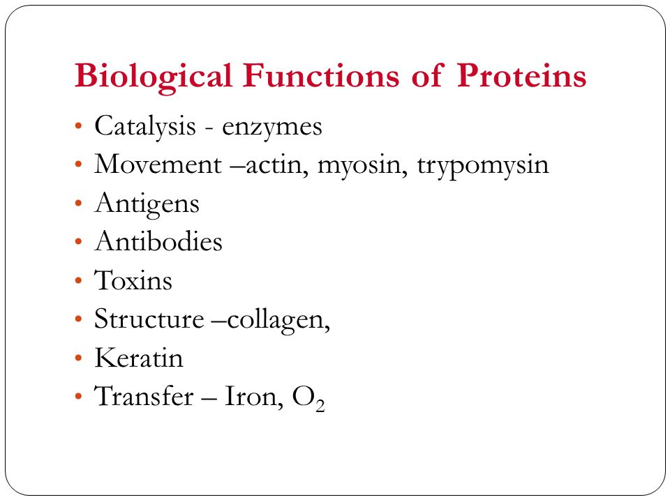 Biological Functions of Proteins Catalysis - enzymes Movement –actin, myosin, trypomysin Antigens Antibodies Toxins Structure –collagen, Keratin Transfer – Iron, O 2
